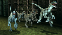 Turok 2 Seeds of Evil Enemies - Velociraptor - Dinosaurs (50)