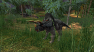 Turok Evolution Triceratops (15)