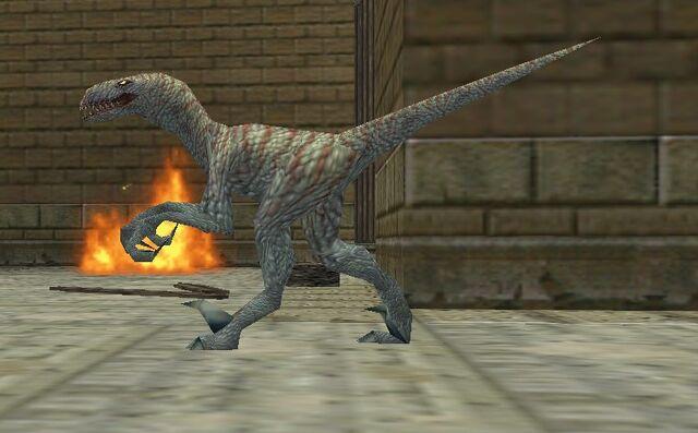 File:Raptor 554.jpg