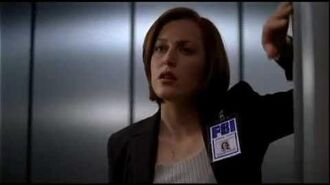 This is why I'm HOT (Dana Scully)