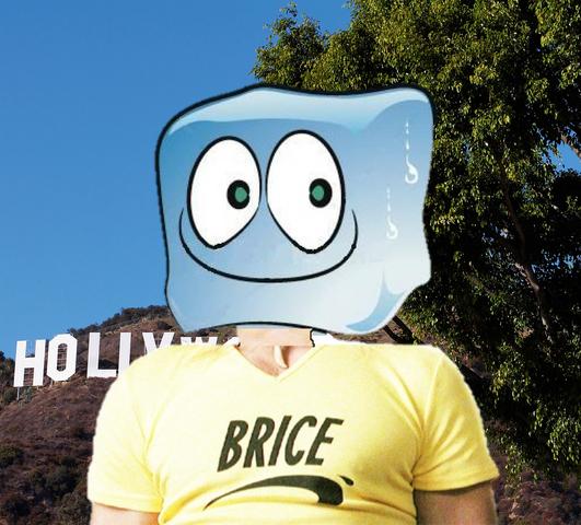 File:Brice.png