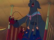 Dumbo 20