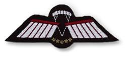 Certificate d parachute wings