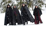 Unamed Volturi members