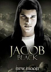 Affiche-du-film-twilight-jacob jpg 500x630 q95