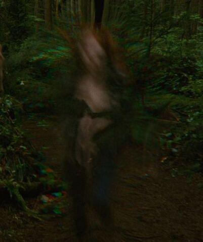 File:Vampire speed 1.JPG