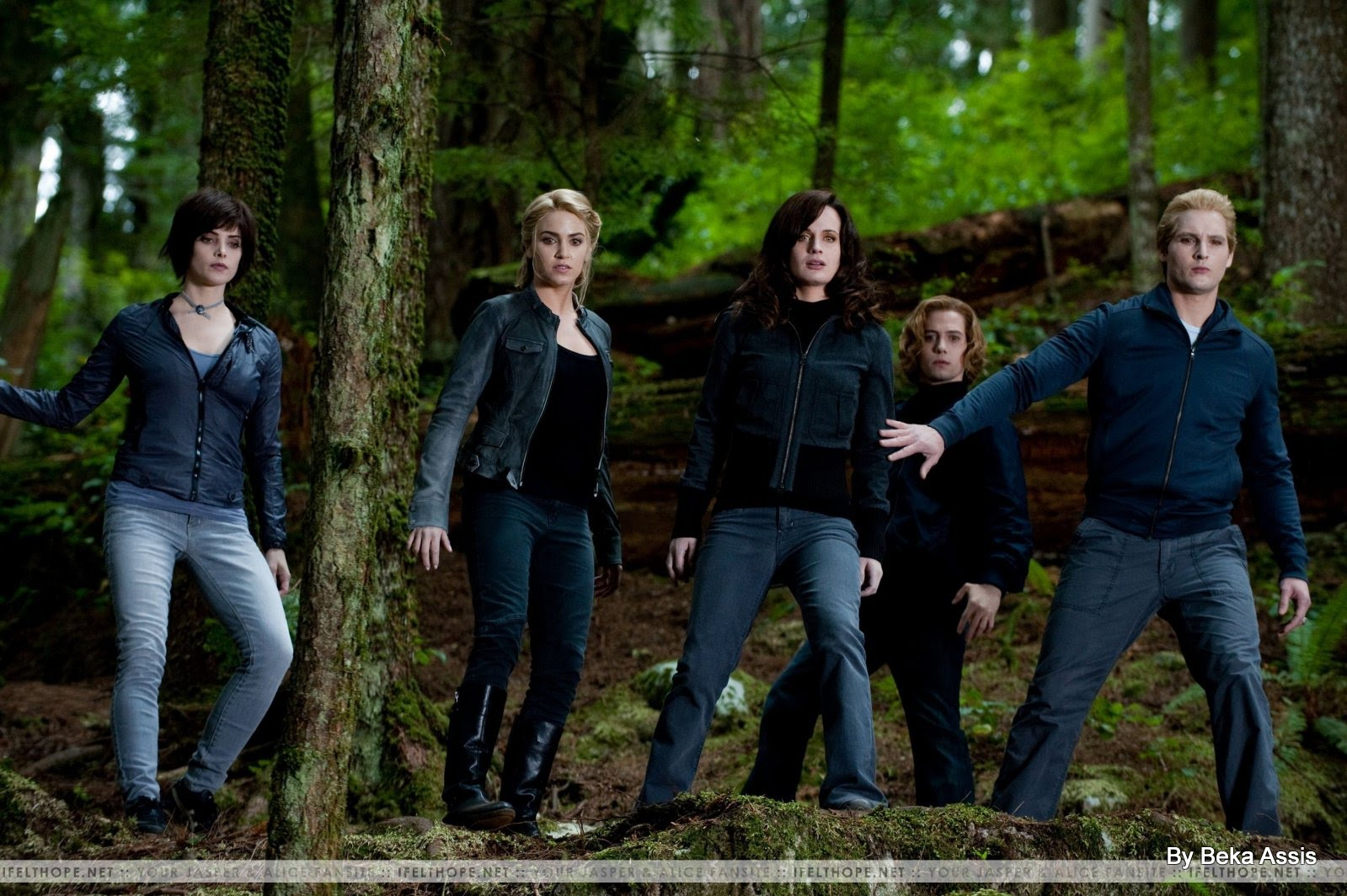 The Cullens image - the cullens forest eclipse | twilight saga wiki