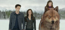 Edward, bella, renesmee y jacob
