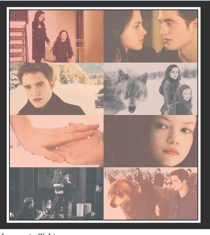 File:Breaking Dawn - the twilight saga.jpg