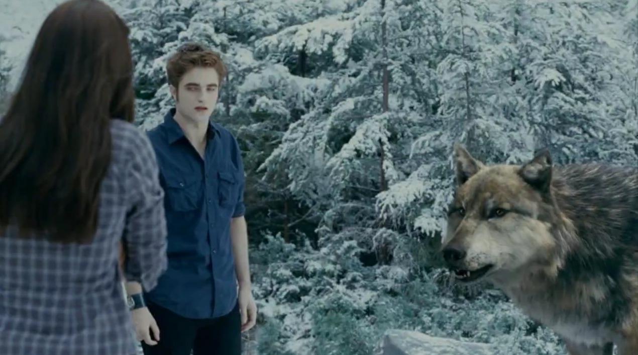 Image - Seth-Wolf Edward Bella.jpg | Twilight Saga Wiki ... Twilight Wolf Pack Seth