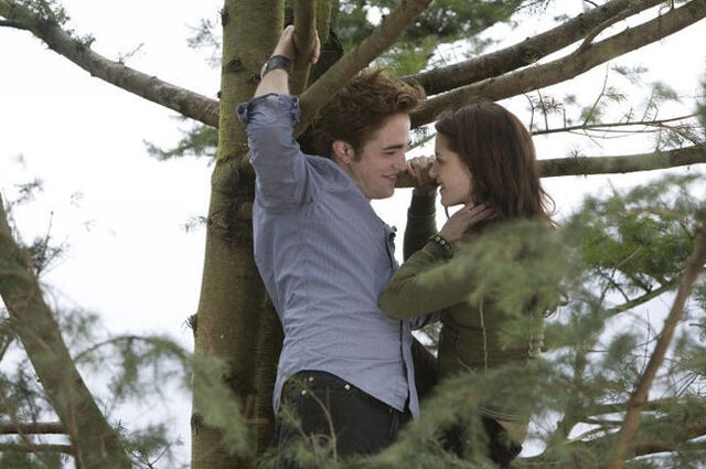 File:Twilight (film) 19.jpg