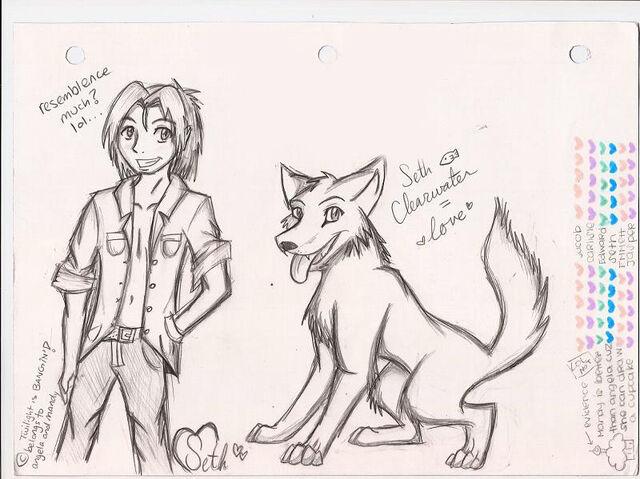 File:Seth Clearwater WOLFIE by Wolf Spirit14.jpg