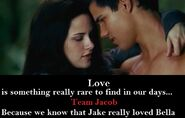 Jacob-Black-Eclipse-Bella-jacob-black-14925733-672-272