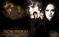 Thumbnail for version as of 02:45, September 8, 2013