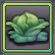 Item-Wild Cabbage