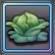 Item-Ripe Cabbage