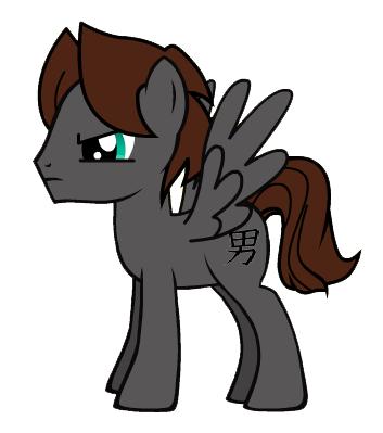 File:Pony-Ryder.png