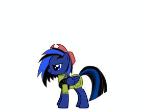PonyMarine