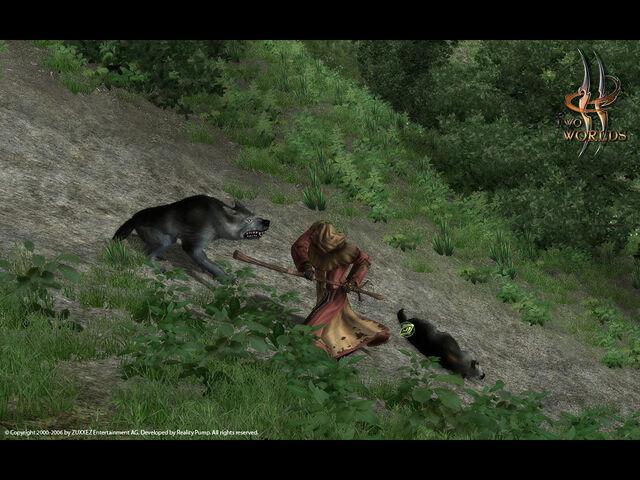 Файл:Wolves.jpg
