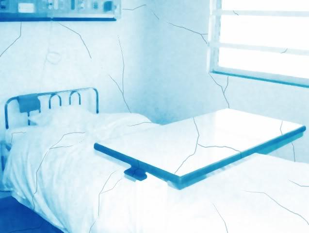Tập tin:Hospitalines.jpg