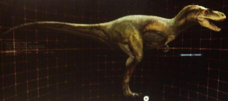 The size of the Albertosaurus