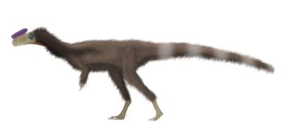 Proceratosaurus bradleyi by primevalraptor-d5p0k8v