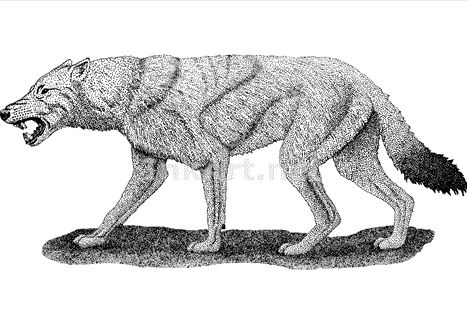 File:Dire Wolf (Roger Hall illustration).jpg
