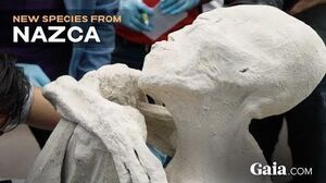 SPECIAL REPORT UNEARTHING NAZCA Only on Gaia