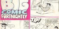 Big Comic Fortnightly