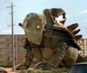 File:King tortoise.jpg