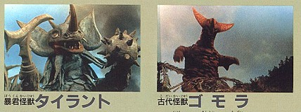 File:Gomora ant tyrant.jpg