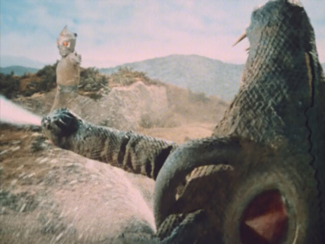 File:Back of Snake.jpeg