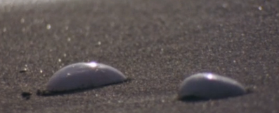 File:The shells.png