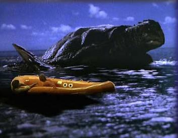 File:Giant Sea Turtle.jpg