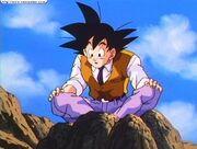 Goku in a monkey suit