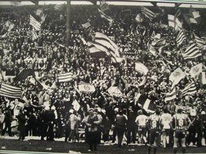 Hammarby 1982