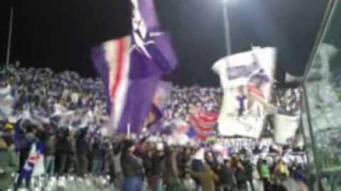 Fiorentina - Bayern Prepartita Curva Fiesole