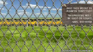Pumkin World Border