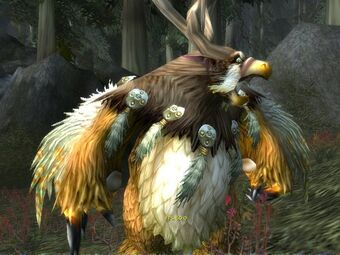 Moonkin in Darkshore1