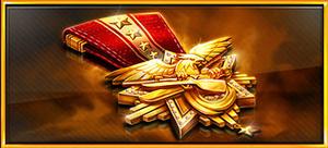 Item medal of valor