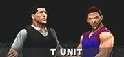 T unit