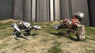 Halo 4 - AI Battle - Crawlers vs Imperial Grunts