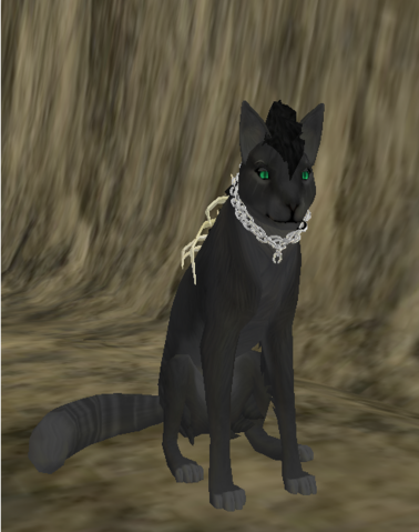 File:Akina Wolf - Species.png
