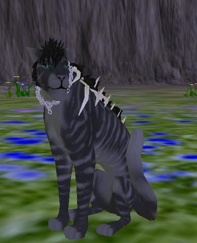 File:Feline - Species.png