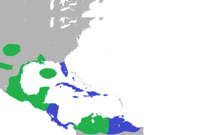 Central American Land Pact.
