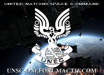 LOGO UNSC copie