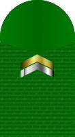 Sleeve marine lance corporal