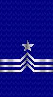 Sleeve blue cpo