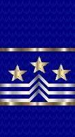 Sleeve blue master cpo sf