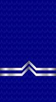 Sleeve blue po 2